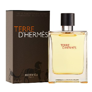 Hermes Terre D Hermes for Men EDT 100ML