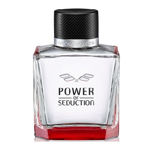 Antonio Banderas Power of Seduction for Men EDT 100ml (Tester)